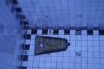 Пластина противорежущая (палец двойной) ACROS TORUM ВЕКТОР ДОН-1500А/Б ДОН-680/М НИВА-ЭФФЕКТ Ростсельмаш