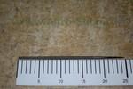 Напильник круглый L=200 мм